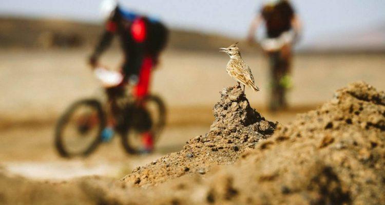 fotos Titan Desert 2019